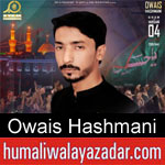 https://humaliwalaazadar.blogspot.com/2019/08/owais-hashmani-nohay-2020.html