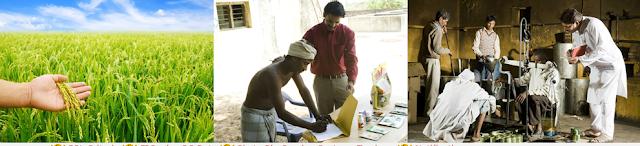 bangalore_mysore_kalaburagi_balagavi_karnataka_ration_card_status_online