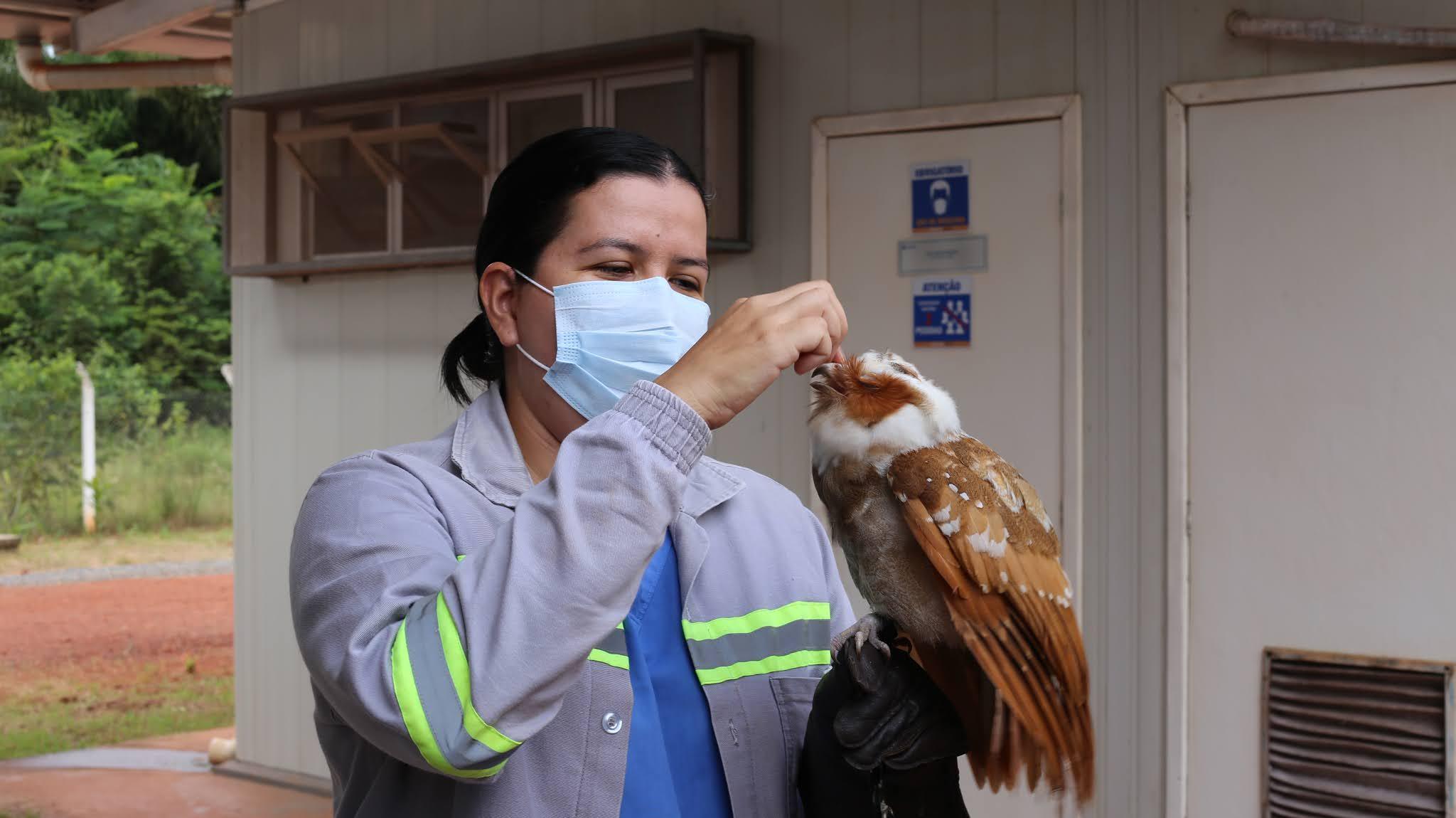 Juruti comemora um ano do Centro de Reabilitação de Animais Silvestres