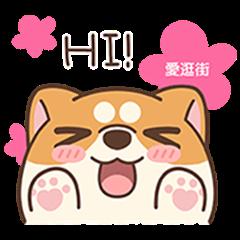 iGuang x Awaslife in Chinese new year