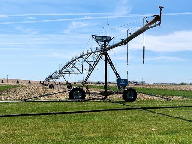 calculate nitrogen credit irrigation water fertigation minnesota