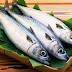 Ikan Bau Amis Mengapa, Kenapa Ikan Bau Amis Begitu Tau Gak, Temukan Jawaban
