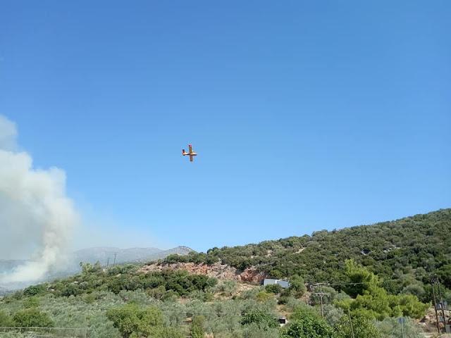 Περιφέρεια και ο Δήμος Ναυπλιέων συνδράμουν την κατάσβεση της πυρκαγιάς στο Κολιάκι Επιδαύρου