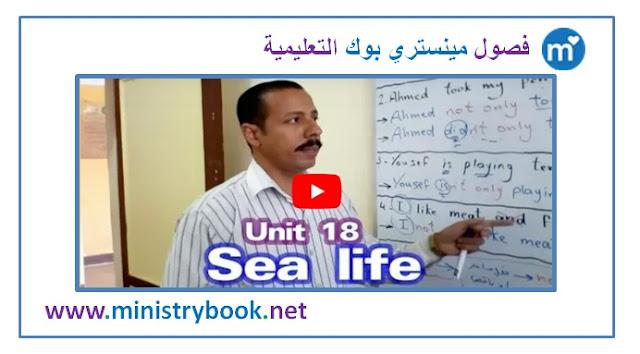 شرح الوحدة 18 لغة انجليزية للصف الثالث الاعدادي ترم ثاني 2019-2020-2021-2022-2023-2024-2025