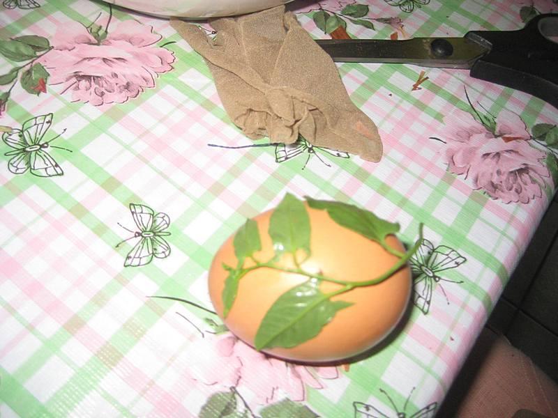 Umočite jaje u vodu, i malo travčicu ili cvetić takođe umočite u vodu kako bi se lepo moglo prilepiti.