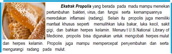 http://pengobatanherbalpenyakit04.blogspot.com/2016/04/propolis-plus-capsule-green-world.html