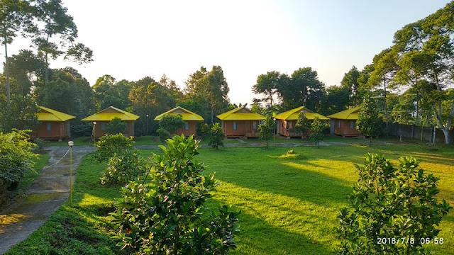 Ragam Pilihan Aktivitas Seru Saat Staycation di Villa Puncak