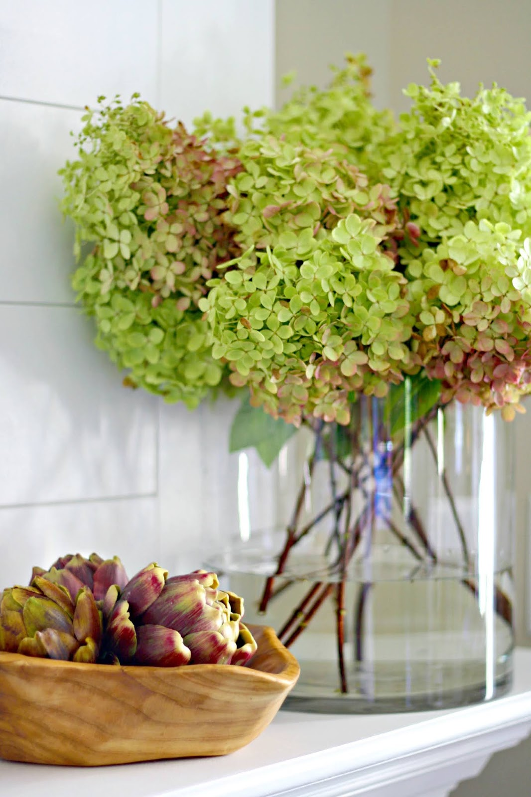 fall limelight hydrangeas