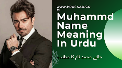 Muhammad Name Meaning in Urdu & Muhammad Name Other Variant