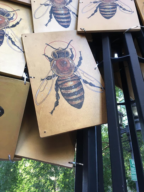 pictures of honey bees