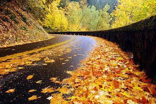 Calendario Mágico: Equinoccio de otoño