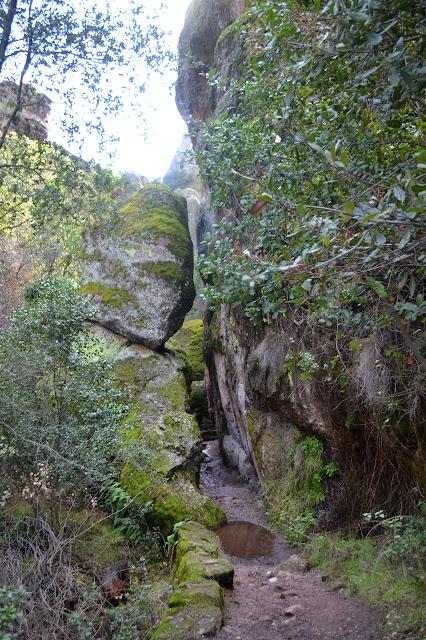 slot between rocks