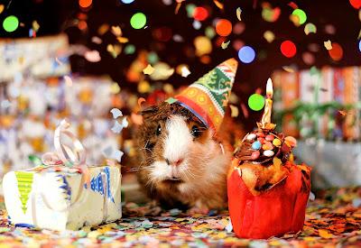 ucapan selamat ulang tahun untuk rekan kerja