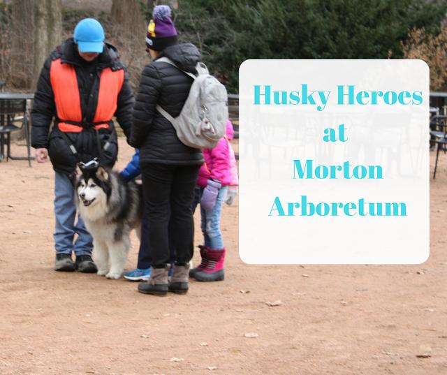 Husky Heroes  at  Morton  Arboretum