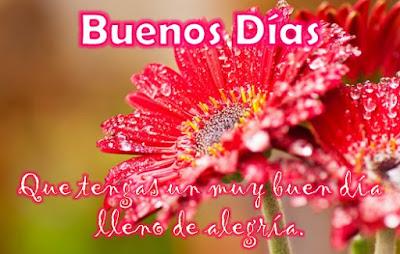 Imagenes Con Frases de Buenos Dias