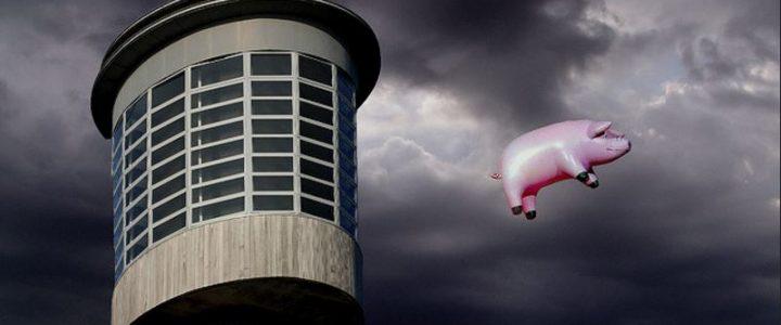 La historia del mítico cerdo volador de Pink Floyd