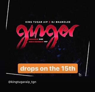 MUSIC: Kingtugar AIP Ft DJ Bhamolee – Ginger (Prod. Msp X Babe)