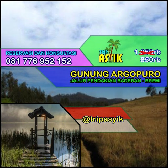 Open Trip Gunung Argopuro Jalur Baderan Turun Bremi