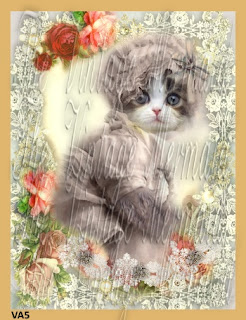altered art cat