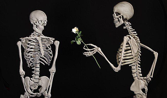 wykształcone randki dla singli łączenie singli serwis randkowy za darmo