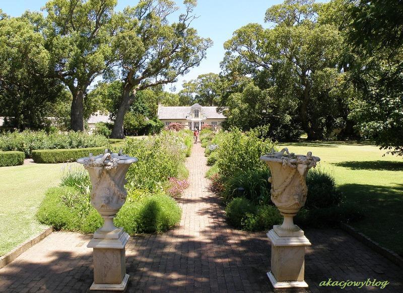 Winnice Stellenbosch w RPA.