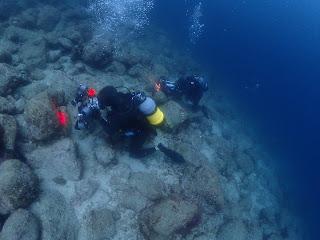 2021年4月12日の柏島ダイビング