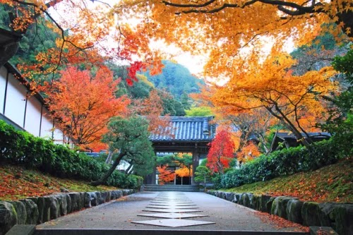 Cities should come when traveling to Japan in the fall