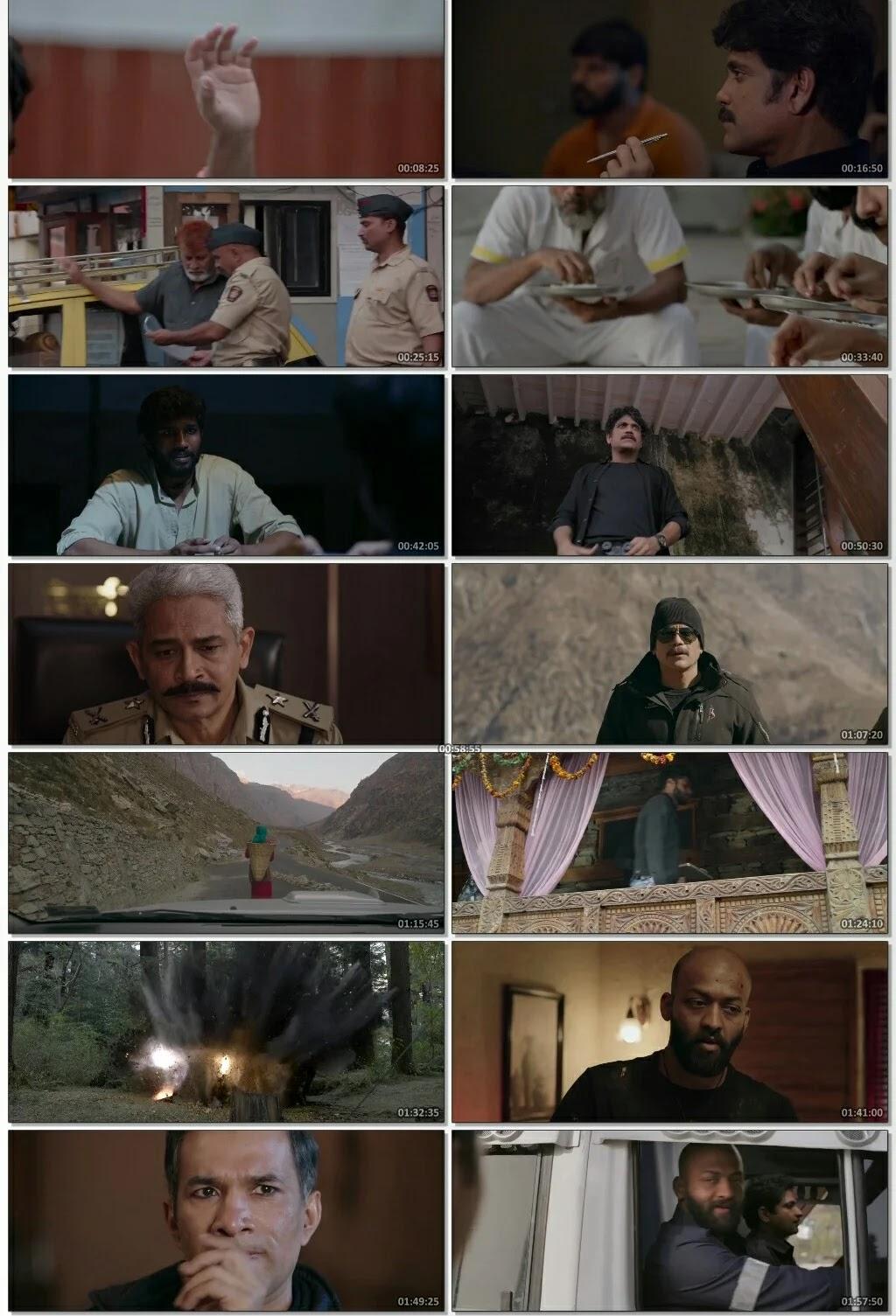 Wild Dog 2021 hindi dubbed download