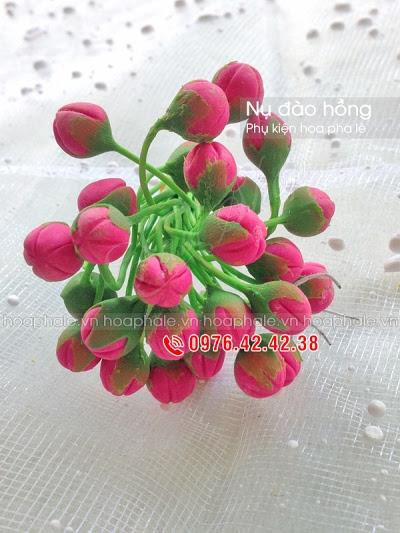 Phu kien hoa pha le tai Nam Tu Liem