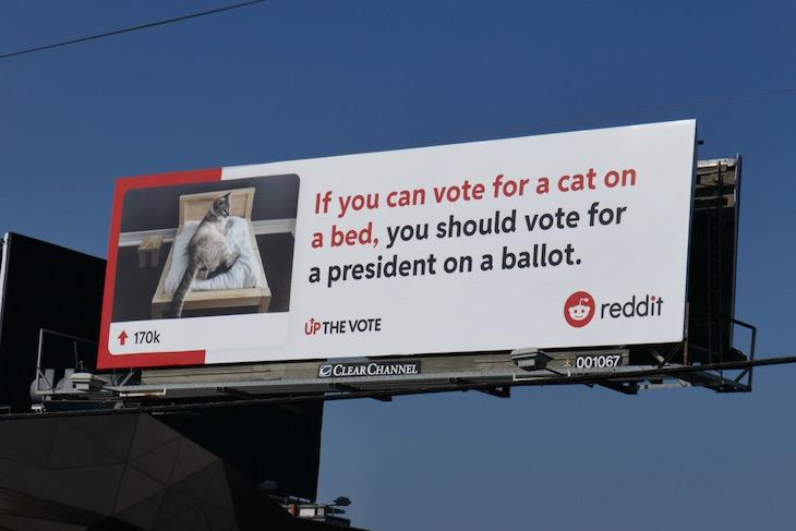 cat on bed reddit up vote billboard