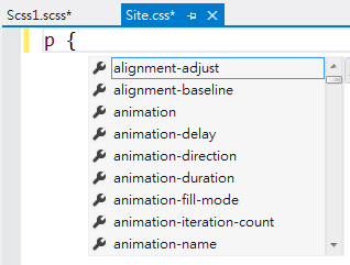 CSS 檔案的 IntelliSense