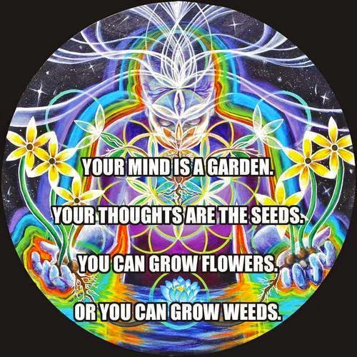 Mind, Garden, thoughts, Seeds, grow, Flowers, Weeds,