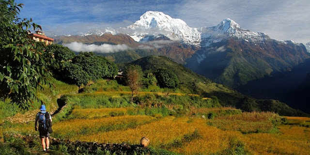 Annapurna Base Camp Trek during Monsoon in Nepal