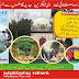 مصطفائی تحریک پنجاب شمالی کے مشاورتی اجلاس کا آج   پھالیہ میں انعقاد