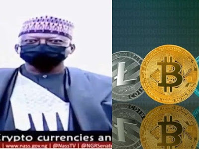 """Naira is almost useless due to cryptocurrency"" – Niger state Senator says"