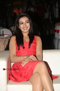 Actress Catherine Tresa Unveils Intex Air Conditioners  0053.jpg