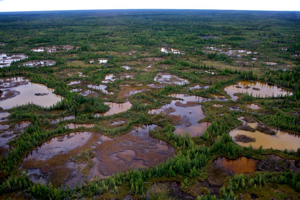 WOOD BUFFALO NATIONAL PARK OF CANADA