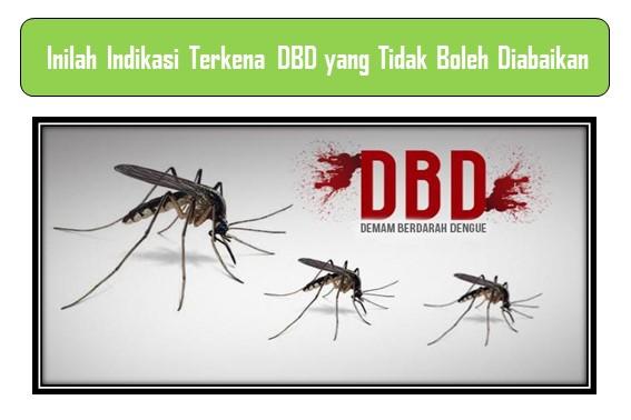 Indikasi Terkena DBD
