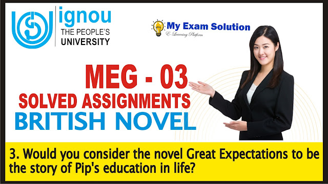 great expectations, british novel, charles dickens,pip's character, ignou assignments,