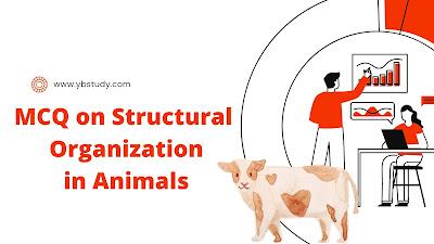 Structural organisation in animals mcq