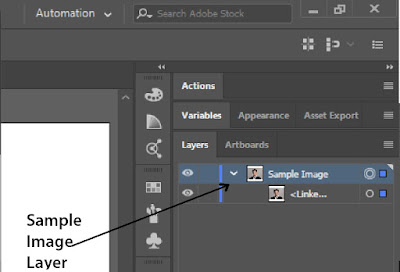 Sample Image Layer   Adobe Illustrator