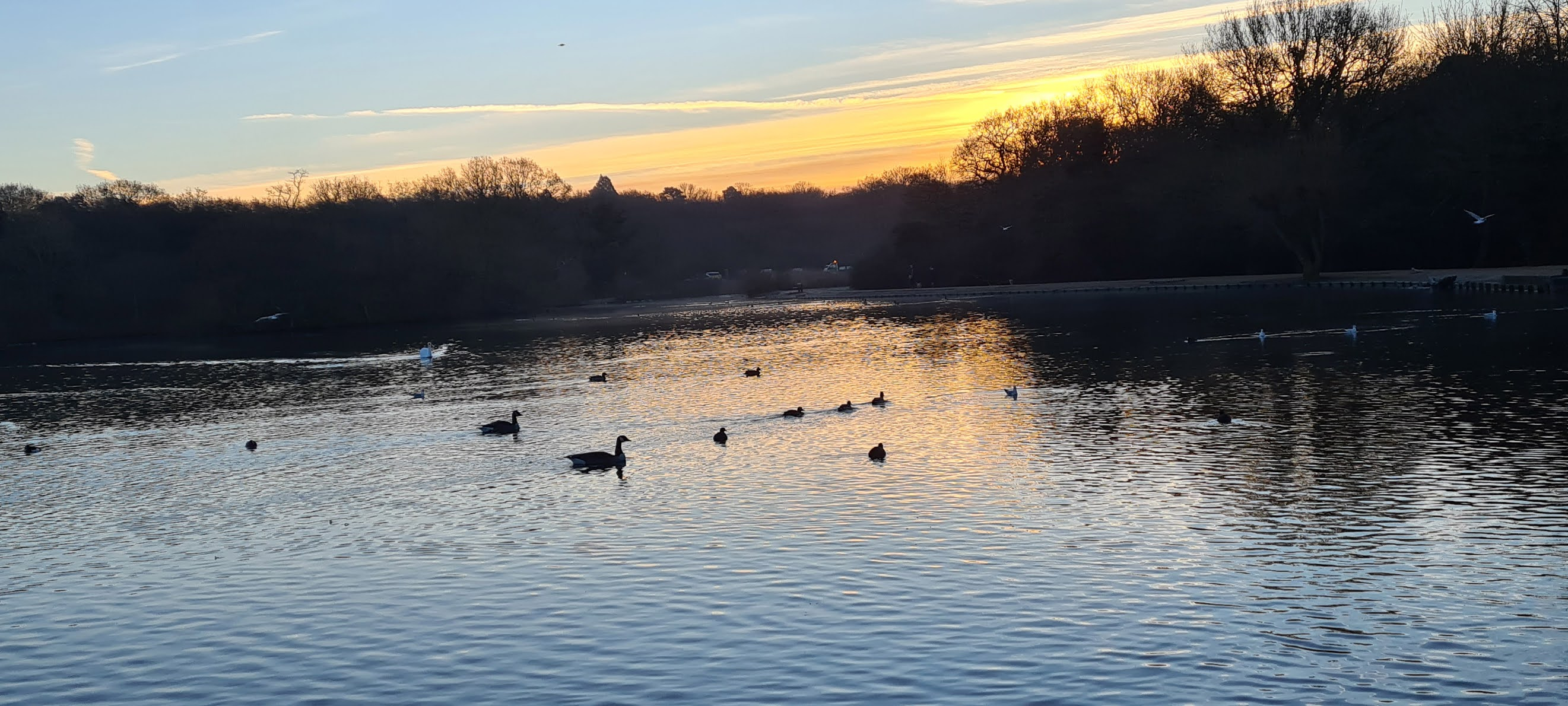 Connaught Water in Epping Forest at sun rise, winter, 2021. Is This Mutton
