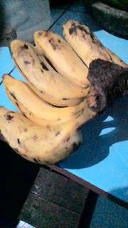 Bananas for Body Health and Nutritional Content Benefits