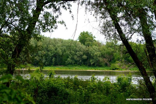 Wisła Warszawa Warsaw Bielany Młociny teren zielony parki drzewa las