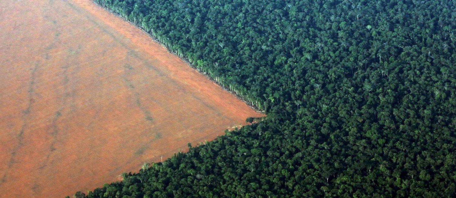 Desmatamento em junho na Amazônia cresce quase 60% em relação ao mesmo mês em 2018