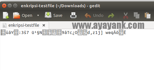 File teks hasil enkripsi php