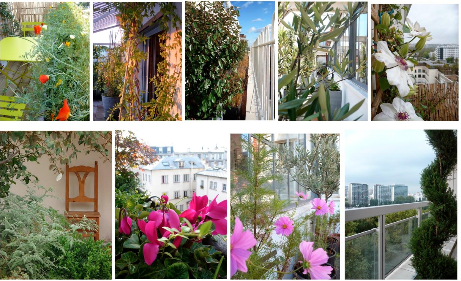 La nature en ville balcons fleuris for La nature en ville