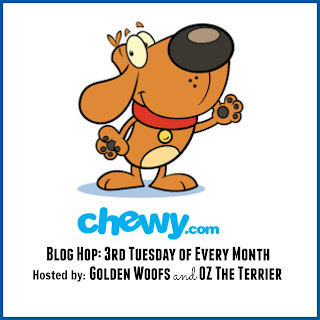 http://www.sugarthegoldenretriever.com/2016/01/chewy-com-blog-hop/