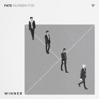 Winner - Fool