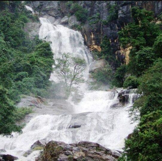 රාවණා ඇල්ල 🌳☘️🎋 (Rawana Falls) - Your Choice Way